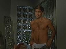 ted mcginley west wing